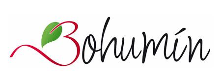 Z bláta do louže: Bohumín má nové logo – Design portál