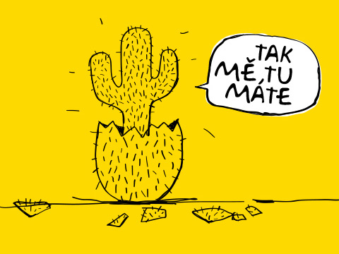 Kaktus mobile
