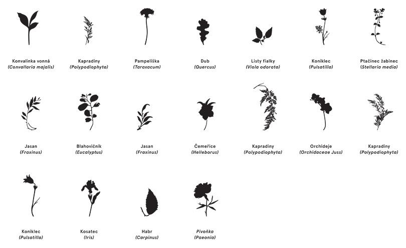 botanicka_zahrada_02