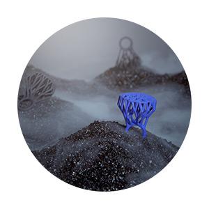 designeros-blueberries